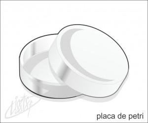 vidrarias de laboratório - placa de petri