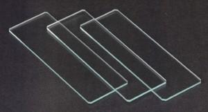 Lâmina é uma placa de vidro de espessura aproximada de 0,3 mm, que serve para fixar qualquer estrutura microscópica.