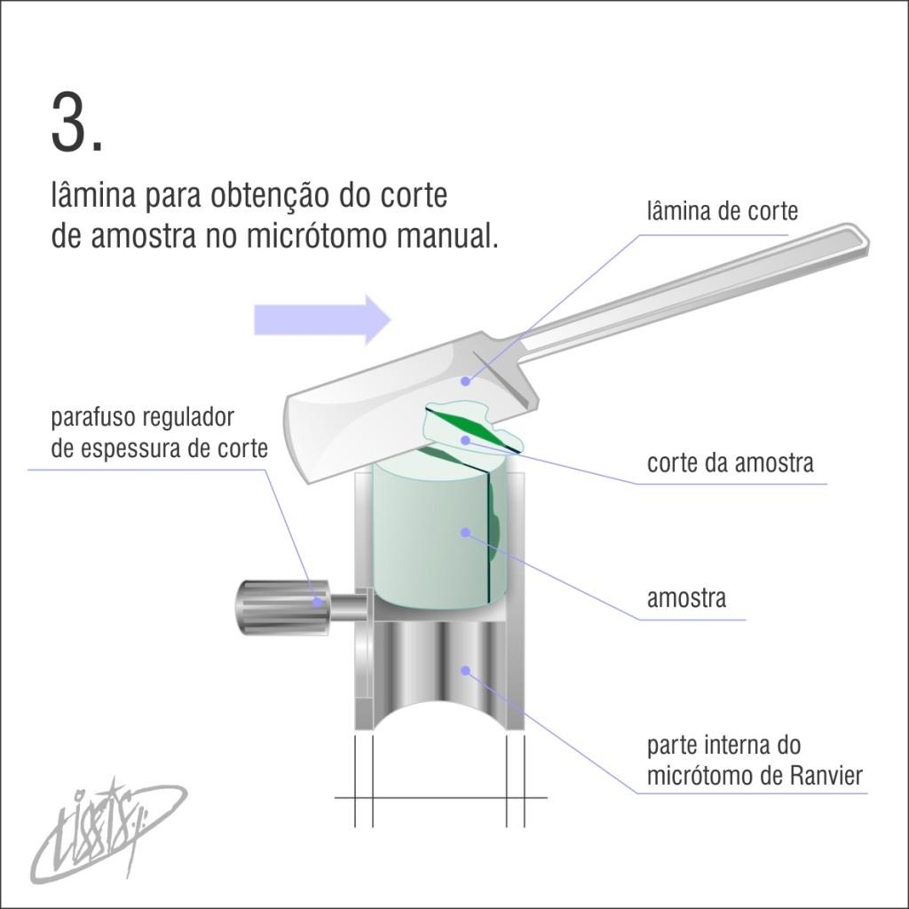 micrótomo manual 03