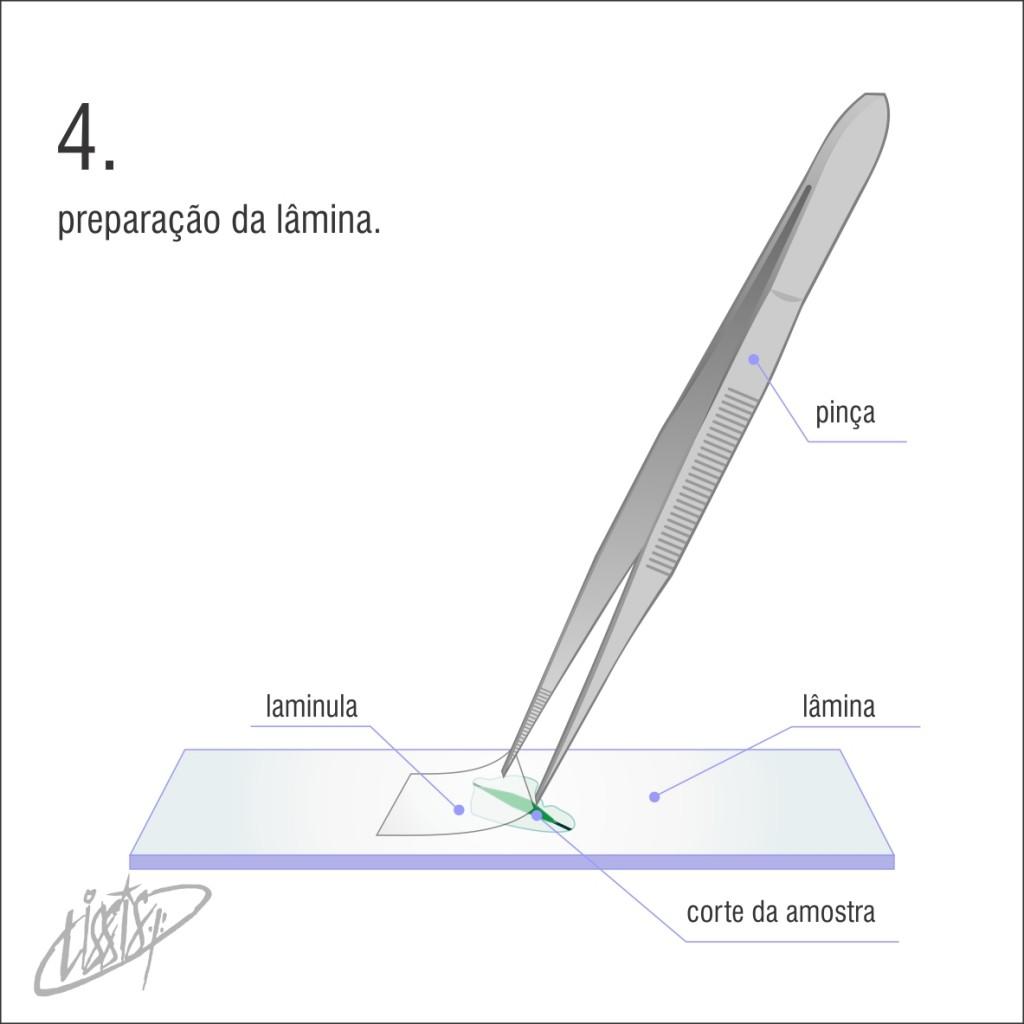 micrótomo manual 04