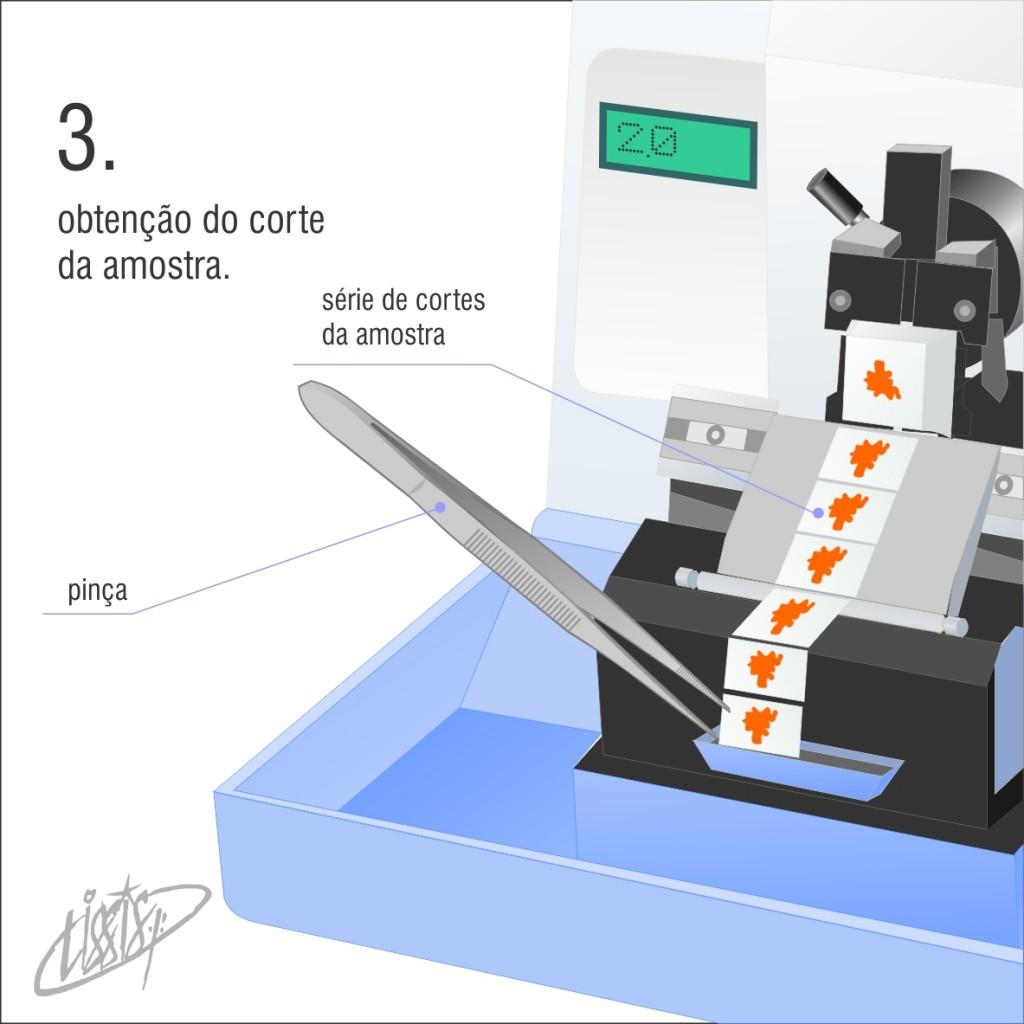 micrótomo manual rotativo 03