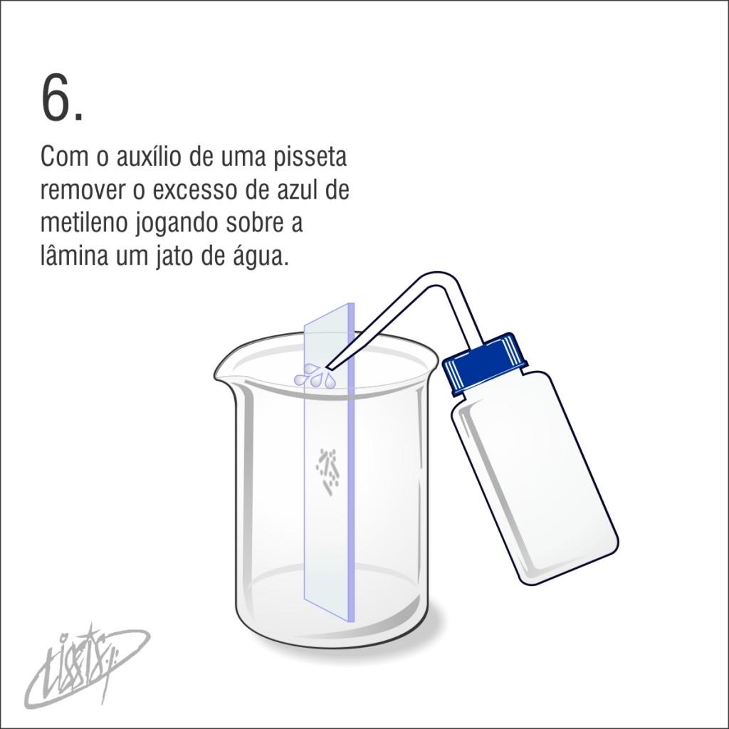 observação de saliva 06