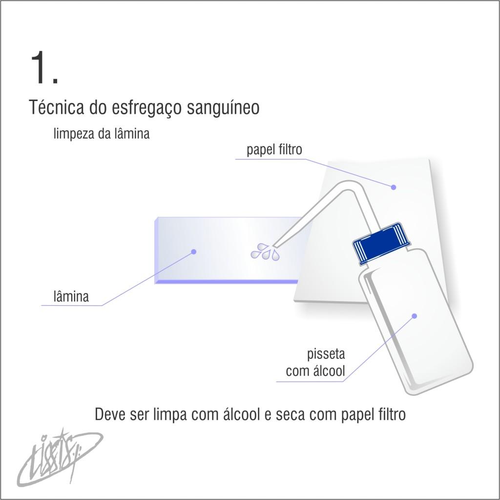 técnica de esfregaço 01