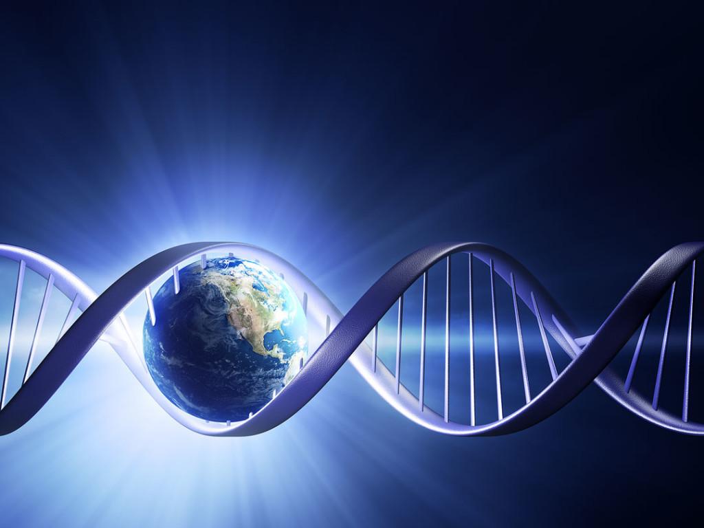 A origem da vida - elementos primordiais